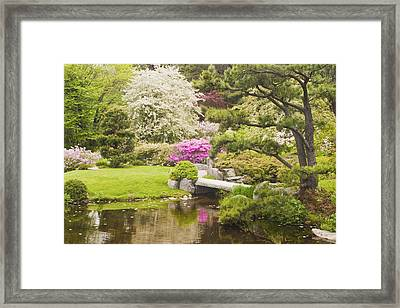 Asticou Azelea Garden - Northeast Harbor - Mount Desert Island - Maine Framed Print