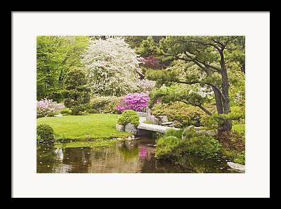 Spring In Maine Photographs Framed Prints