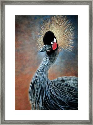 Attitude Bird Framed Print