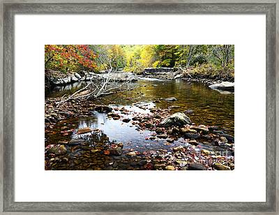 Autumn Along Cranberry River Framed Print by Thomas R Fletcher