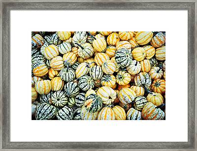 Framed Print featuring the photograph Autumn Gourds by Crystal Hoeveler