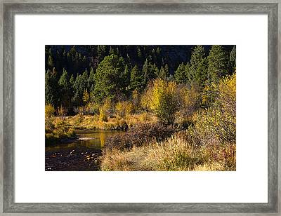 Autumn In The Rockies Framed Print by Anne Rodkin