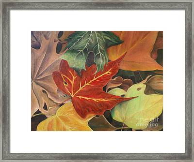 Autumn Leaves In Layers Framed Print by Christy Saunders Church