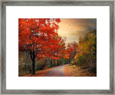 Framed Print featuring the photograph Autumn Maples by Jessica Jenney
