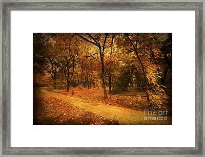 Autumn Path Framed Print by Svetlana Sewell