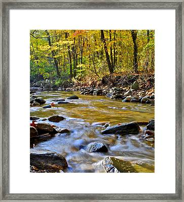 Autumn Stream Framed Print by Frozen in Time Fine Art Photography