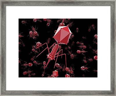 Bacteriophage T4 Viruses Framed Print by Maurizio De Angelis