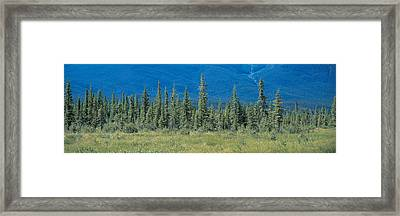 Banff National Park Alberta Canada Framed Print by Panoramic Images