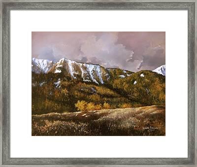 Bear Claw Framed Print