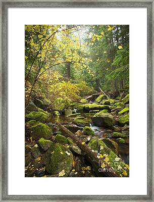 Beauty Creek Framed Print by Idaho Scenic Images Linda Lantzy