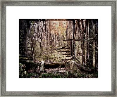 Framed Print featuring the photograph Been There by Bonnie Willis