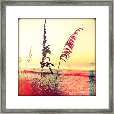 Before Day Framed Print by Chris Andruskiewicz