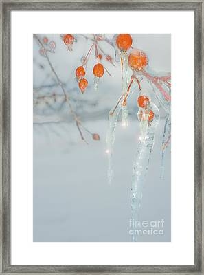 Framed Print featuring the photograph Before The Thaw by Sandi Mikuse