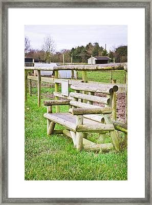 Bench Framed Print by Tom Gowanlock