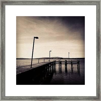 2 Bird Dock Framed Print