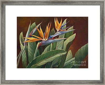 2 Birds Of Paradise Framed Print by Laurie Hein