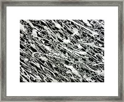 Black And White Framed Print by Shabnam Nassir