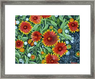 Blanket Flowers Framed Print