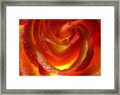 Bling Framed Print by Louie Rochon