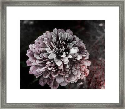 bloodLoss Framed Print