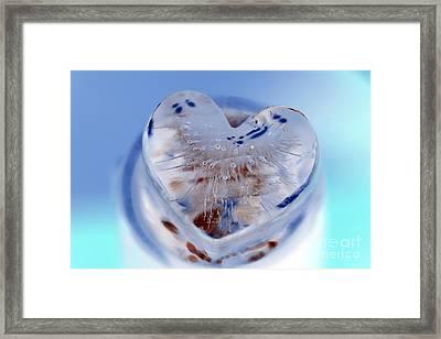 Blue Framed Print by Amanda Barcon