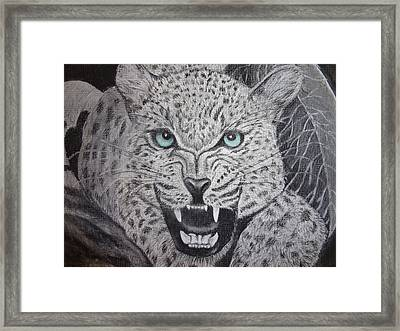 Blue Eyed Liger Framed Print by Trishia Peterson