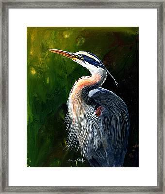 Blue Heron  Framed Print by Sherry Shipley