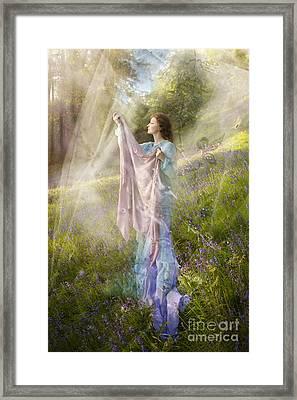 Bluebells Framed Print by Angel  Tarantella