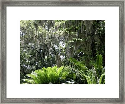Bonaventure Framed Print by Victoria Lakes