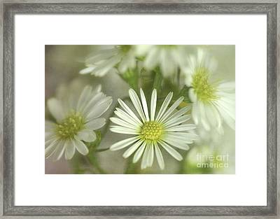 Bouquet Of White And Green Framed Print by Julie Palencia