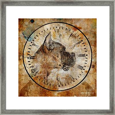 Boxer Time Framed Print by Judy Wood