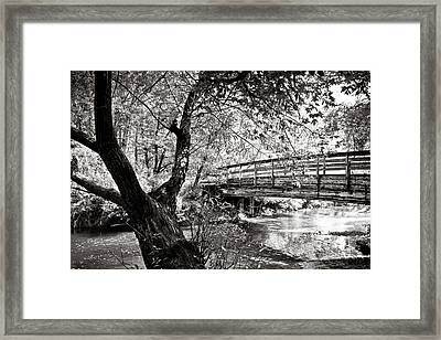 Bridge At Ellison Park Framed Print