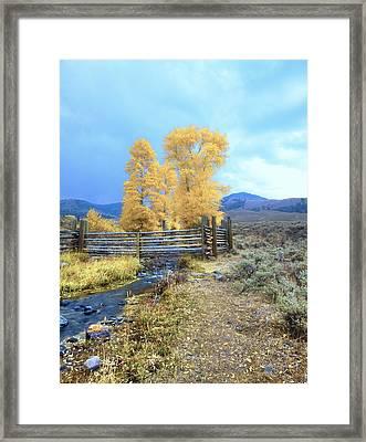 Buffalo Ranch Framed Print