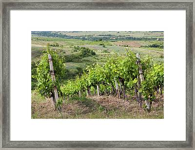 Bulgaria, Southern Mountains Framed Print by Walter Bibikow