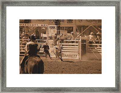 Bull Rider Framed Print by Stormys Unique   Creations
