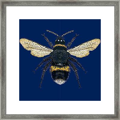 Bumblebee Bedazzled Framed Print