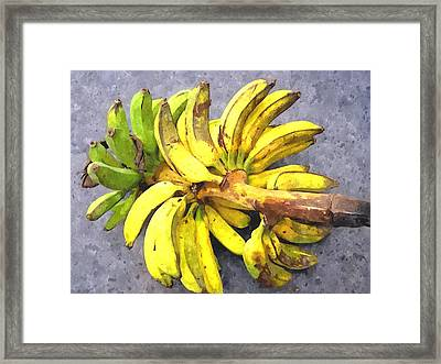 Bunch Of Banana Framed Print by Lanjee Chee