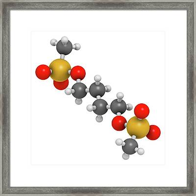 Busulfan Chemotherapy Drug Molecule Framed Print