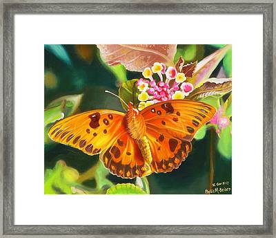 Butterfly And Lantana Framed Print by Phyllis Beiser