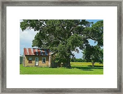 Cajun Home Framed Print by Ronald Olivier
