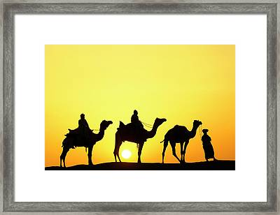 Camels And Camel Driver Silhouetted Framed Print by Adam Jones