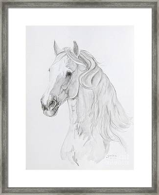 Carate Framed Print by Janina  Suuronen