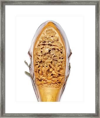 Carved Hornbill Skull Framed Print by Natural History Museum, London