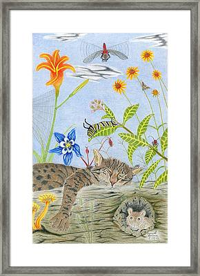 Cat And Mouse Framed Print by Gerald Strine