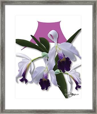 Cattleya Valentine Triage Dafoi Art 2 Of 3  Framed Print by Ruth  Benoit