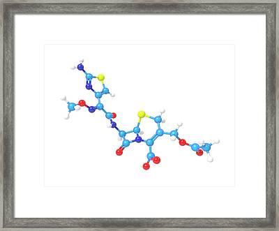 Cefotaxime Molecule Framed Print by Indigo Molecular Images