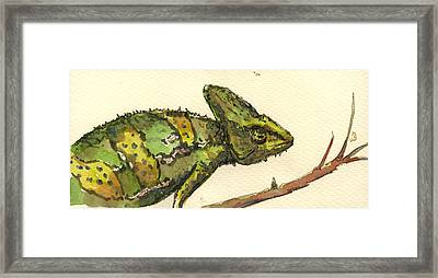 Chameleon Framed Print by Juan  Bosco