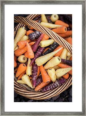 Chanteney Carrots Framed Print by Aberration Films Ltd