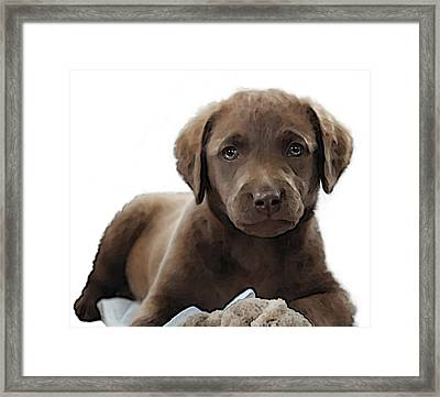 Chessie Framed Print