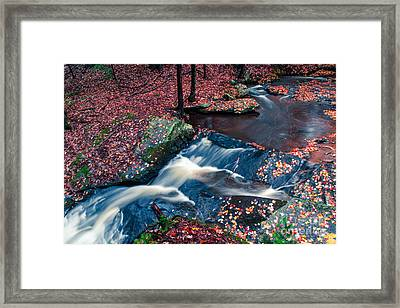 Chesterfield Gorge New Hampshire Framed Print
